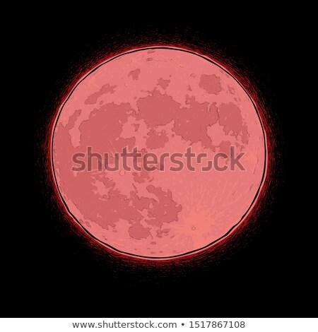 Halloween fumetto icone sanguinosa luna libero Foto d'archivio © nazlisart