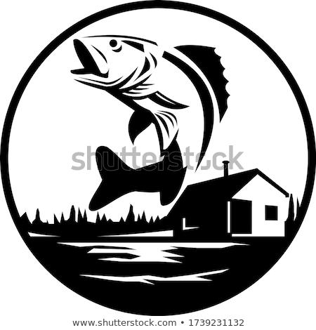 Walleye Fish Jumping on Lake With Lodge Cabin Circle Black and White Retro Stock photo © patrimonio