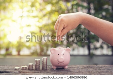 Kobieta strony ceny monety banku piggy krok Zdjęcia stock © snowing
