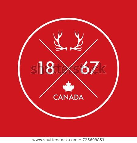 Vermelho galhada escudo projeto emblema cinza Foto stock © mikemcd