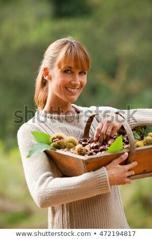 Portré nő gesztenye kosár zöld park Stock fotó © photography33