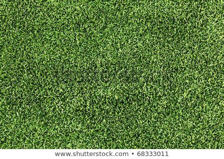 élevé résolution artificielle gazon herbe verte image Photo stock © REDPIXEL