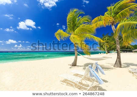 Seven Mile Beach Grand Cayman Stock photo © mosnell