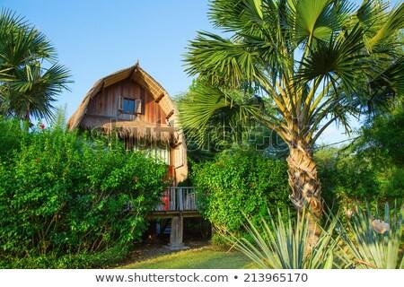 Tropicales Resort Asie jungle maison bâtiment Photo stock © travelphotography