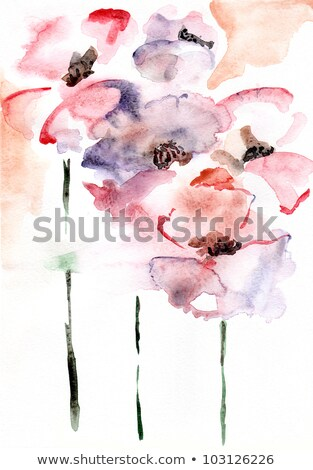 poppy flowers on stained paper Stock photo © sirylok