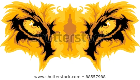 Oroszlán szemek kabala vektor grafikus csapat Stock fotó © chromaco