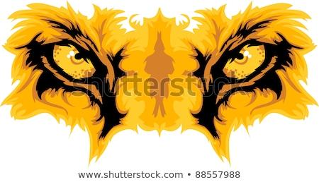 Lion Eyes Mascot Vector Graphic Stock photo © chromaco