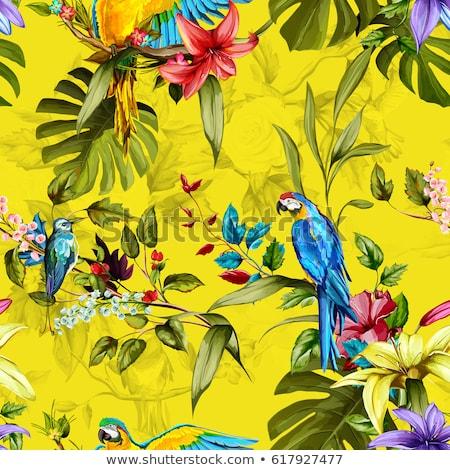 resumen · verde · rama · amarillo · primavera · naturaleza - foto stock © lenapix