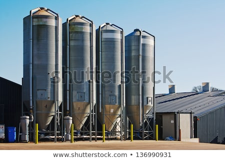 shed for poultry farm Stock photo © xedos45