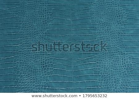 aligátor · bőr · textúra · természet · minta · állat - stock fotó © stoonn