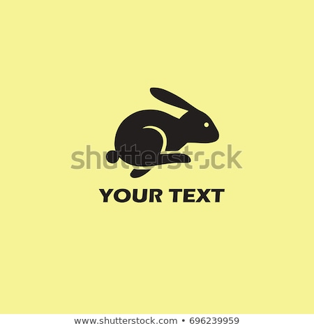 Courir lapin Photo stock © zzve