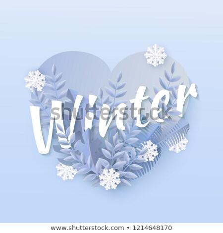 Buz gibi kalp beyaz kar sevmek doğa Stok fotoğraf © mallivan