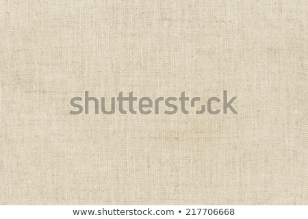 light natural linen texture for the background Stock photo © oly5