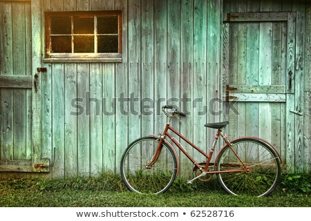 Door Window Shed Stock photo © rghenry