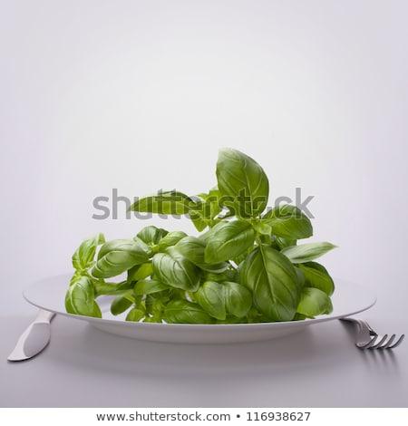 Doce manjericão folhas prato dieta Foto stock © natika