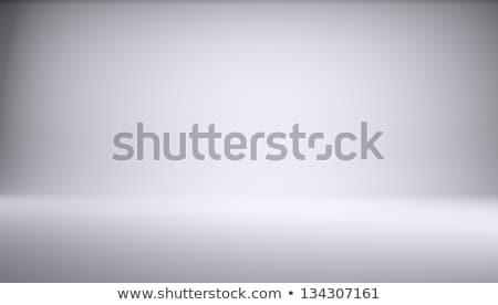 Fehér üres fotó stúdió négyszögletes forma Stock fotó © cherezoff