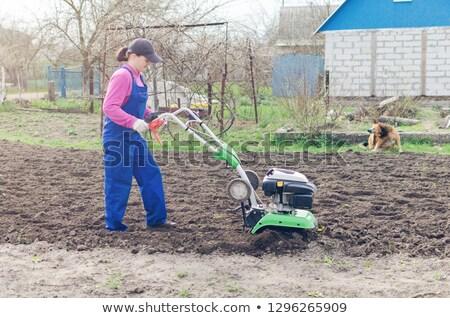 Nő kert tavasz elektromos otthon dolgozik Stock fotó © pancaketom