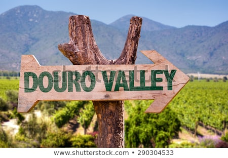 sign of Douro river, Douro Valley, Portugal Stock photo © phbcz
