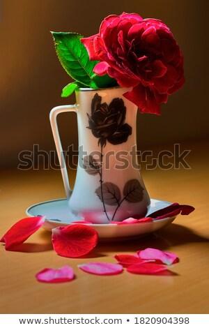Mooie fotografie binnenkant Rood rose bladeren bloem Stockfoto © dla4