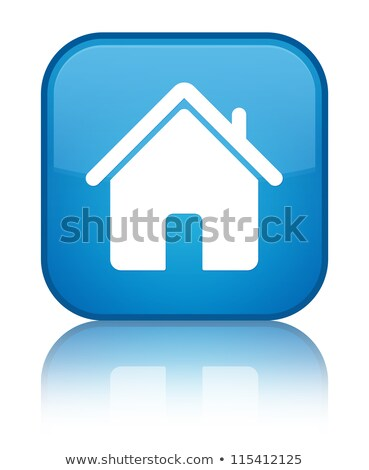 Home icon glossy blue reflected square button Stock photo © faysalfarhan