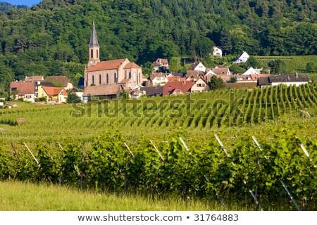 Eguishem, Alsace, France Stock photo © phbcz