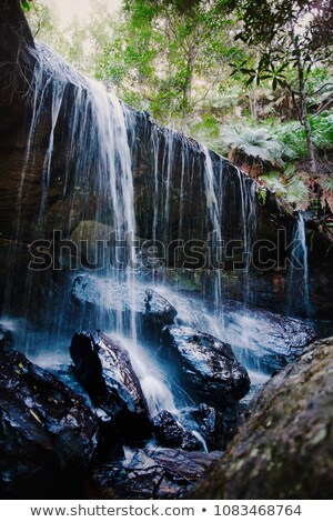 The lush Grotto at Fitzory Falls Australia Stock photo © lovleah
