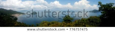 Görmek plaj çiçekler Panama şehir yatay Stok fotoğraf © diego_cervo