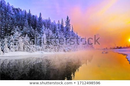 Stockfoto: Winter · schoonheid · mooie · blond · ingericht · sneeuw