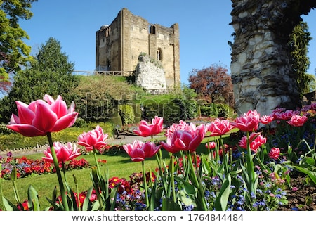 Guildford Castle Grounds, Surrey Stock photo © smartin69