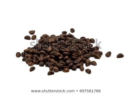 Manhã glória coleção preto semente ervas Foto stock © ziprashantzi