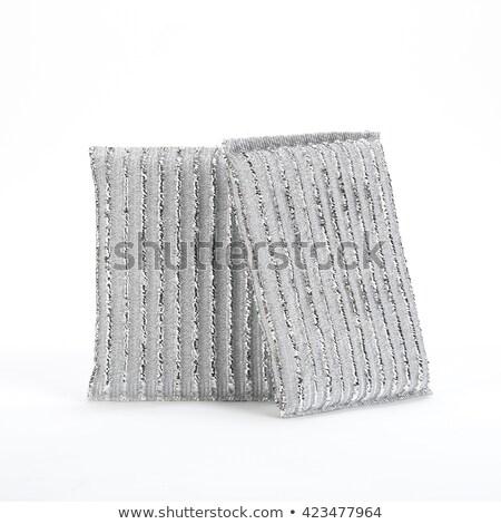 Kettő acél drót cserjék fehér fém Stock fotó © peter_zijlstra