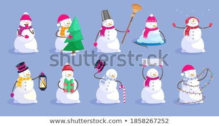 Mroźny dar niebieski śniegu polu cool Zdjęcia stock © HASLOO