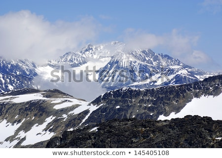 view on rugged landscape with snowy glacier in the back Stock photo © Hofmeester