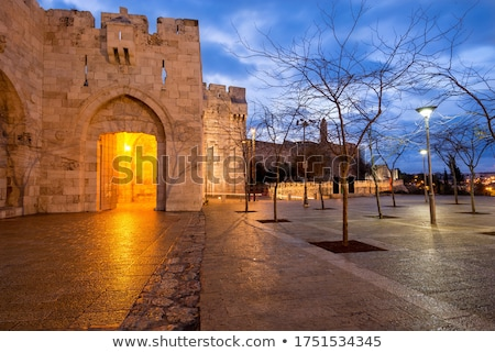 Main gate of the citadel Stock photo © rmbarricarte