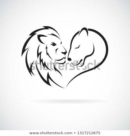 lion and liones spouses Stock photo © adrenalina