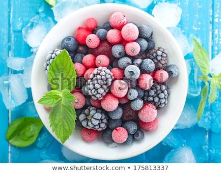 részlet · mogyoró · bokor · természet · gyümölcs · zöld - stock fotó © meinzahn