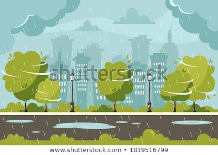 Regenachtig weer illustratie witte achtergrond storm Stockfoto © bluering