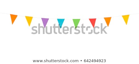 Set of colorful bunting and garlands isolated on white Stock photo © Evgeny89