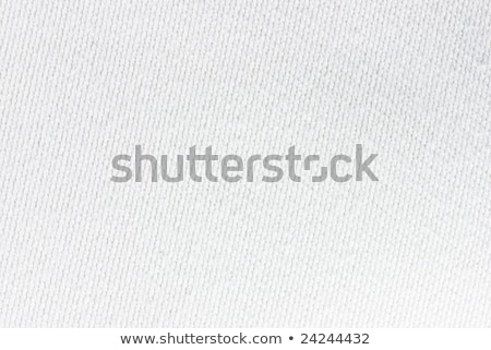 Textur Baumwolle Stoff Zelle abstrakten Mode Stock foto © OleksandrO