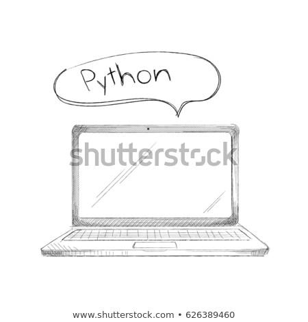 рисованной · программированию · язык · ноутбука · питон · изолированный - Сток-фото © user_11397493