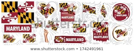 USA · Maryland · zászló · fehér · 3d · illusztráció · textúra - stock fotó © mikhailmishchenko