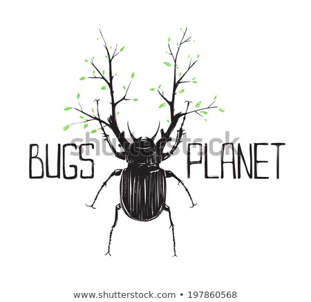 Big black beetle with horns Stock photo © OleksandrO