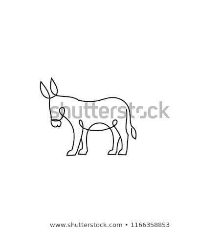 bonitinho · burro · vetor · ilustração · sorrir · crianças - foto stock © bluering