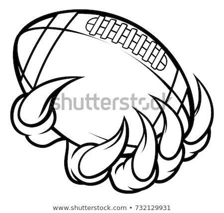 Monster animal claw holding American Football Ball Stock photo © Krisdog