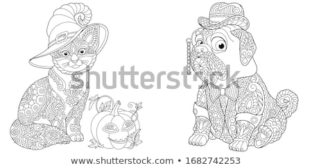 cats and dogs characters coloring book Stock photo © izakowski