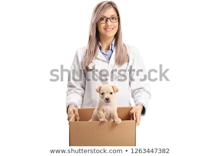 Doctor carrying sick puppy stock photo © Kzenon