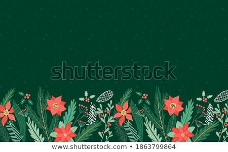 Yeşil çam ağacı yaprak kart şablon bo Stok fotoğraf © cienpies