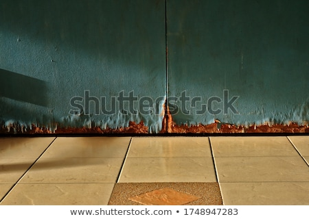 Old wooden door in bad condition Stock photo © colematt