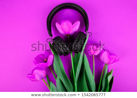 Black Headphones and red  bouquet tulips on red background. stock photo © Illia