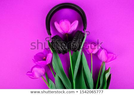 preto · fones · de · ouvido · vermelho · buquê · tulipas · topo - foto stock © Illia